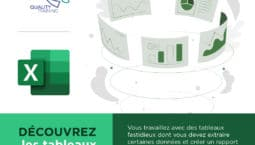 Webinar sur Excel par Quality Training